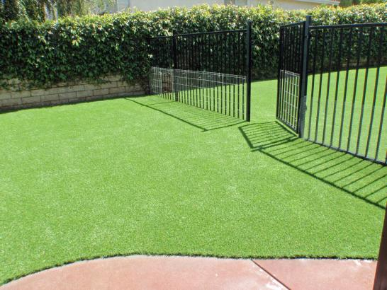 Artificial Grass Photos: Synthetic Grass Lakewood, California Lawns, Front Yard